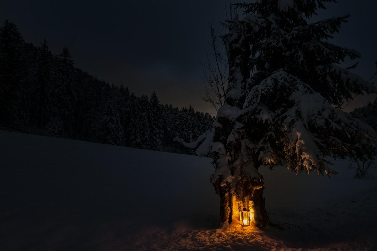 Bildwerkstatt Feiga - Galerie - Weihnachtszeit